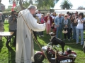 blessing of animals 2011 041